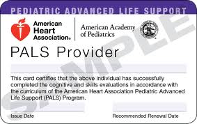 American Heart Association PALS